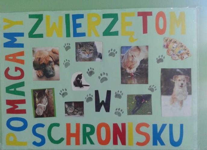 Akcja - Paczka dla zwierząt - plakat