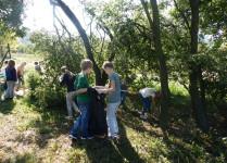 Grupa dzieci sprząta teren przed szkołą